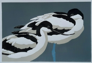 Avocet 300 mm x 200 mm edition of 10 sold out