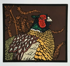 Pheasant 210 mm x 195 mm edition of 16